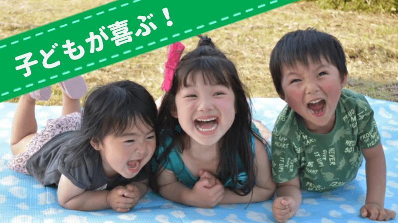 ピクニックの遊び道具(子ども向き)
